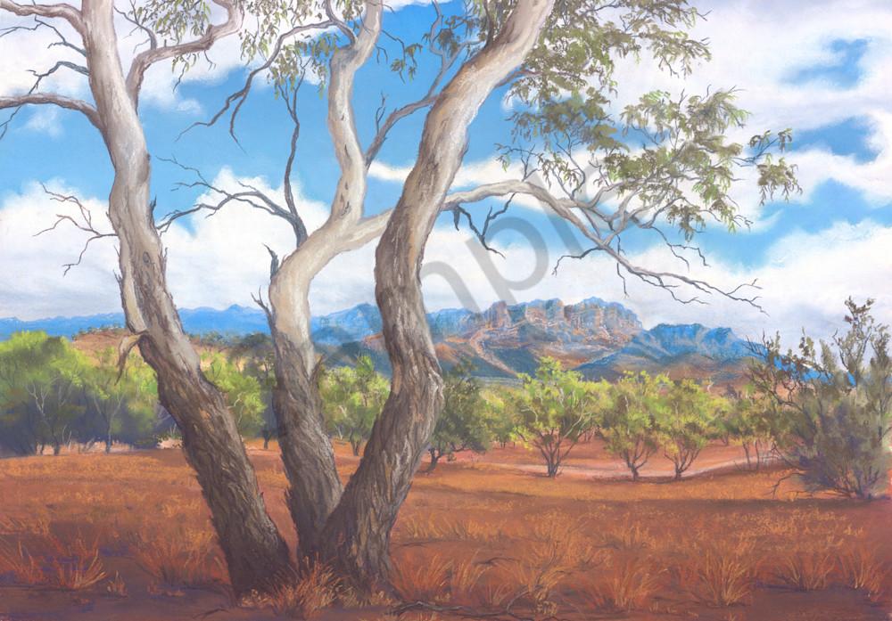 Flinders Elder Range by Jenny Greentree