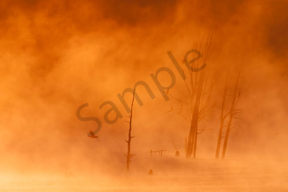 Twilight Wall Art: Hunting in the Fog