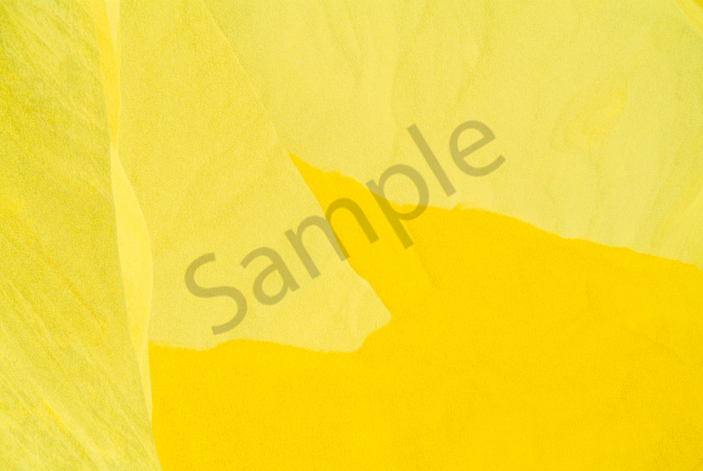 Yellow-within-Gold