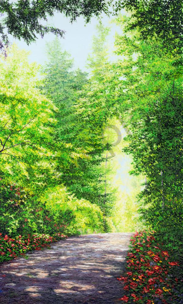 Walk In Peace Art for Sale