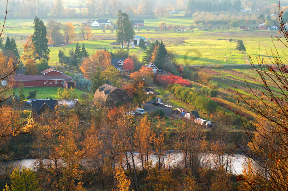 Oregon countryside in late Fall.
