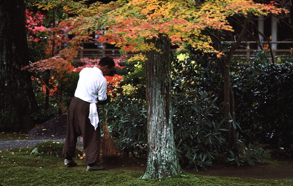 Sanzen-in Temple gardens. Ohara, Japan