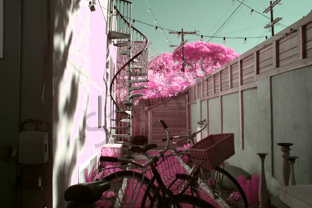 Back yard, Venice, Air bnb