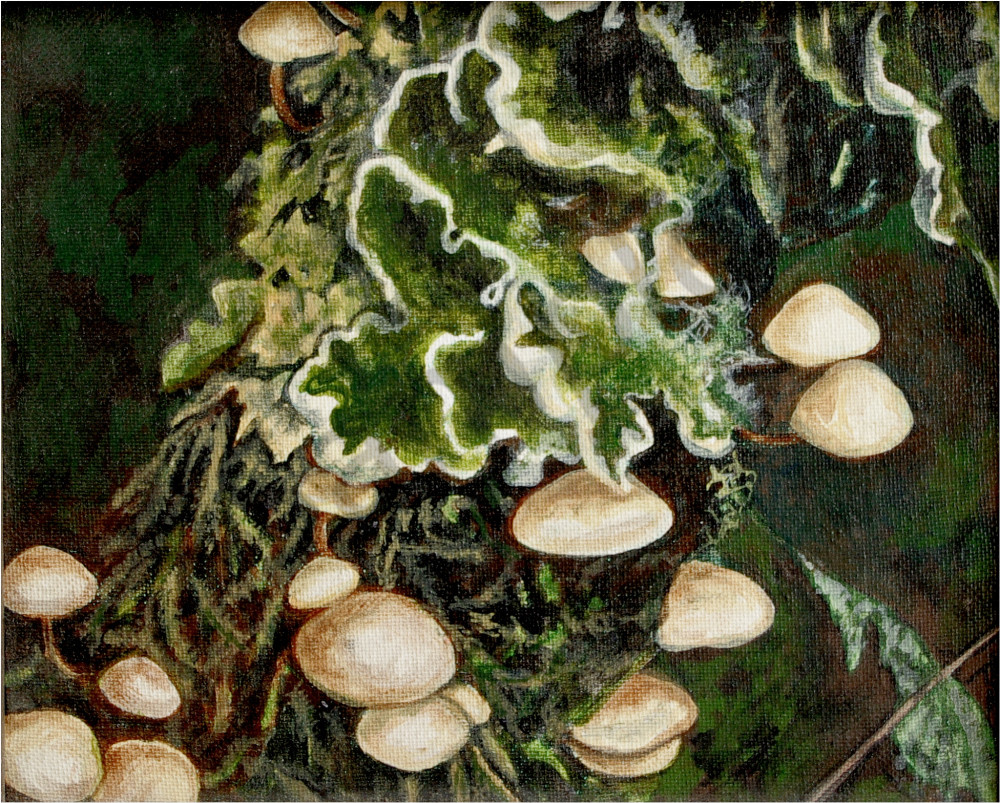 The  Fungus - Teresa Young