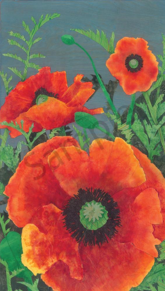 Poppy #4