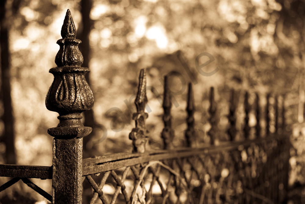 Sepia Antique Fence Wall Art Print