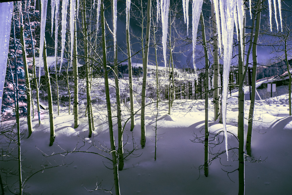 Ice, Trees, Deer Valley, Sundance, Film Festival