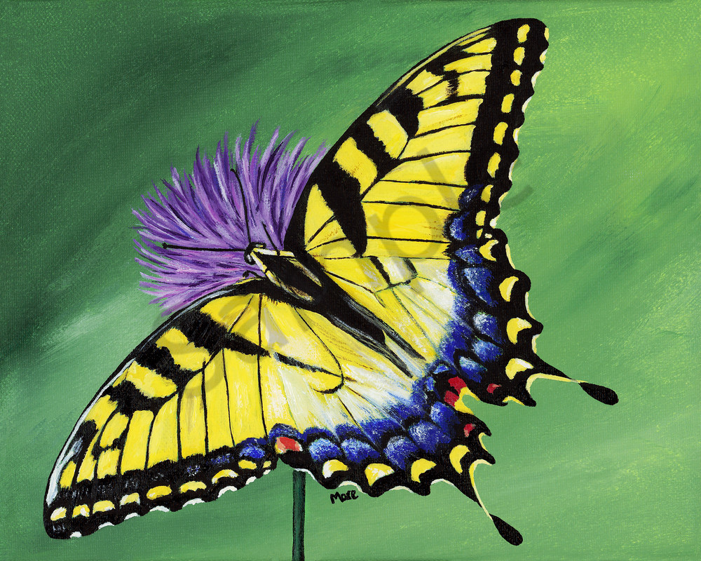 Acrylic painting of a Yellow Tiger Swallowtail on Purple Echinacea