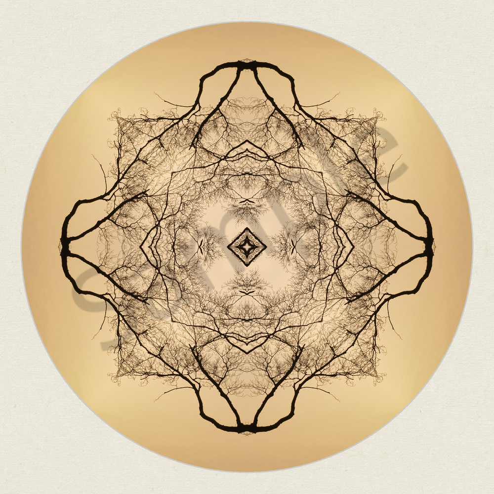 Golden Evening for sale as fine art photographic mandala.