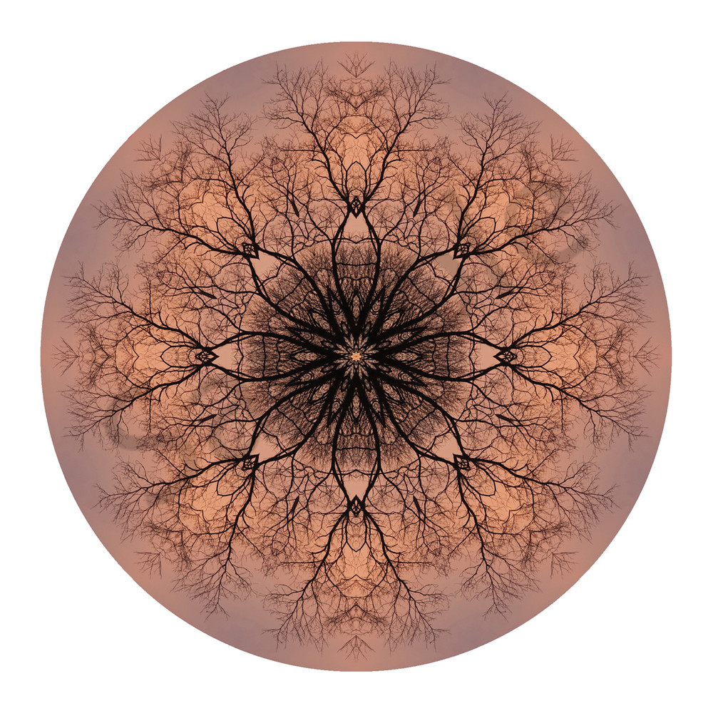 Sunset Lace for sale as fine art photographic mandala.