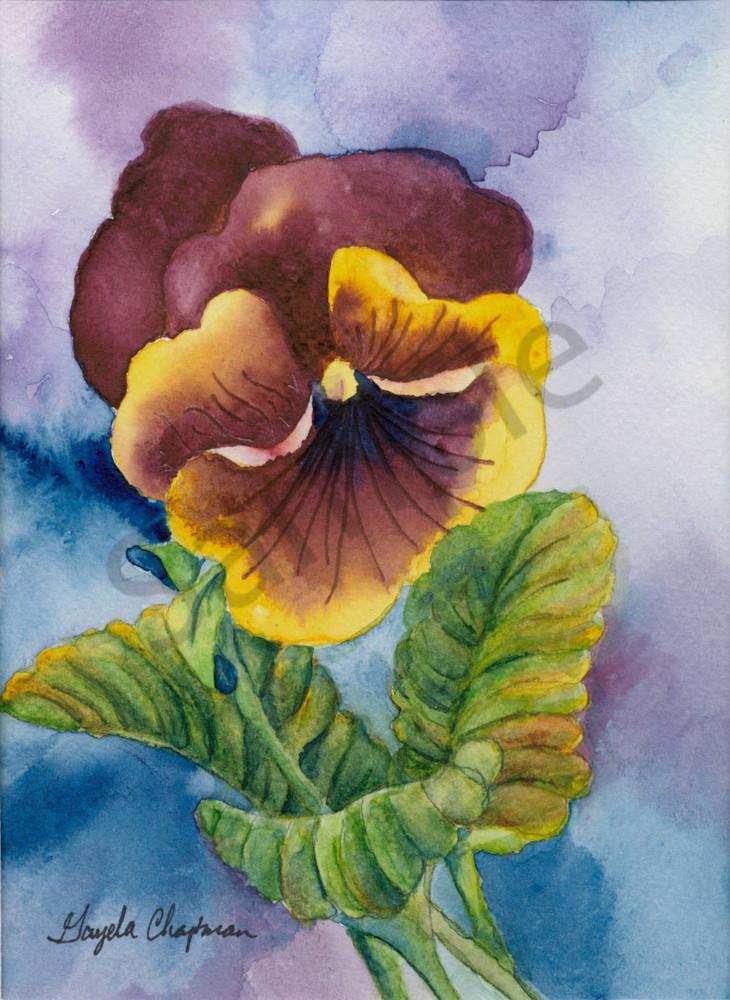 Purple & Yellow Pansy Flower art Gayela's Premiere Watercolor|Main Store