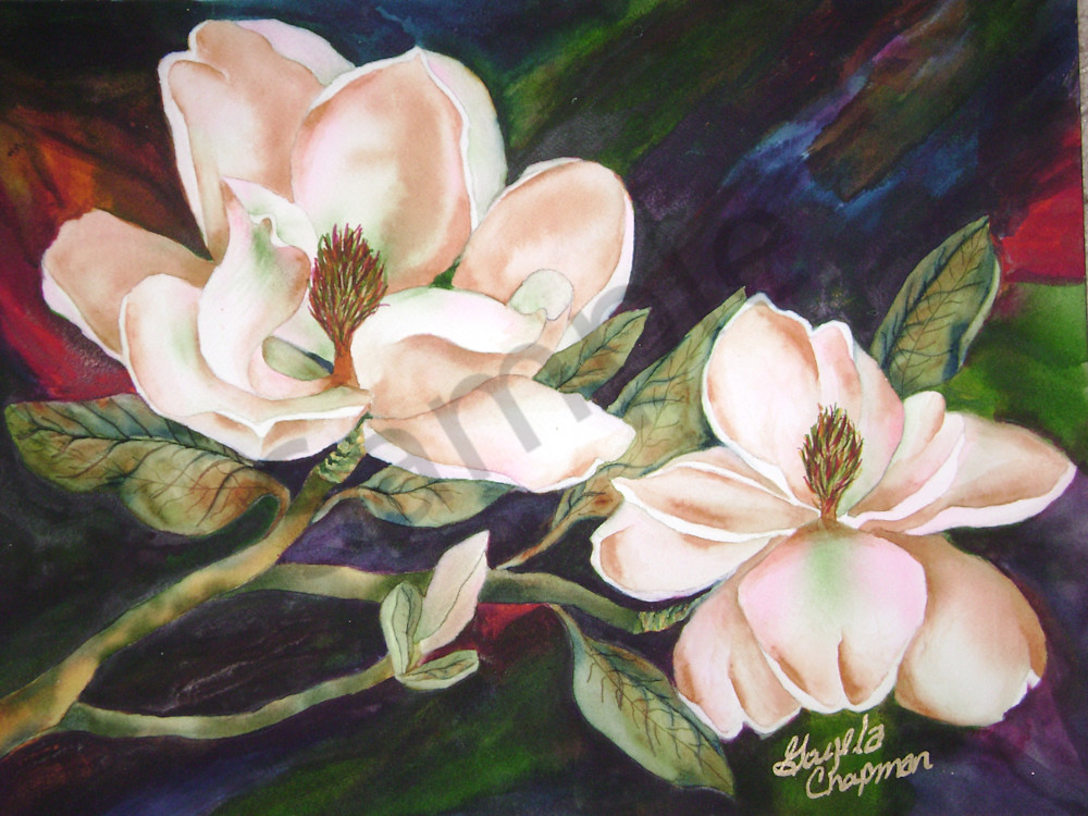 Magnolia Flowers art by Gayela's Premiere Watercolor|Main Store