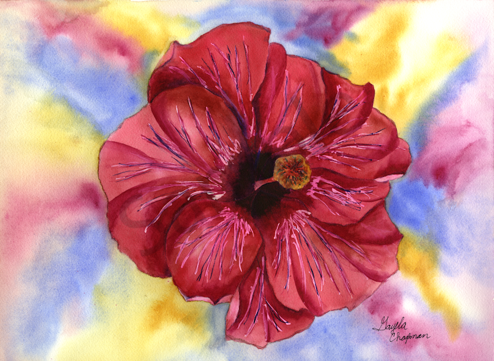 Red Hibiscus Flower Art by Gayela's Premiere Watercolor|Main Store
