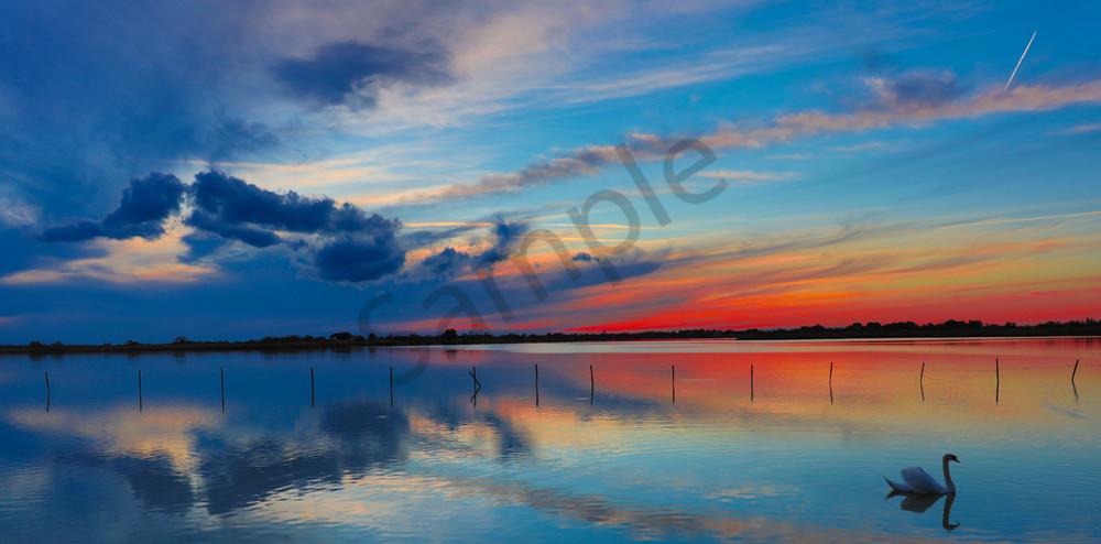 Swan Song Photography Art | John Martell Photography