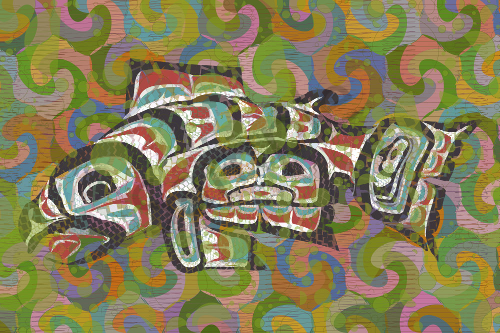 """""""Salmon Stretched Canvas Print by Peter McClard at VectorArtLabs.com"""""""