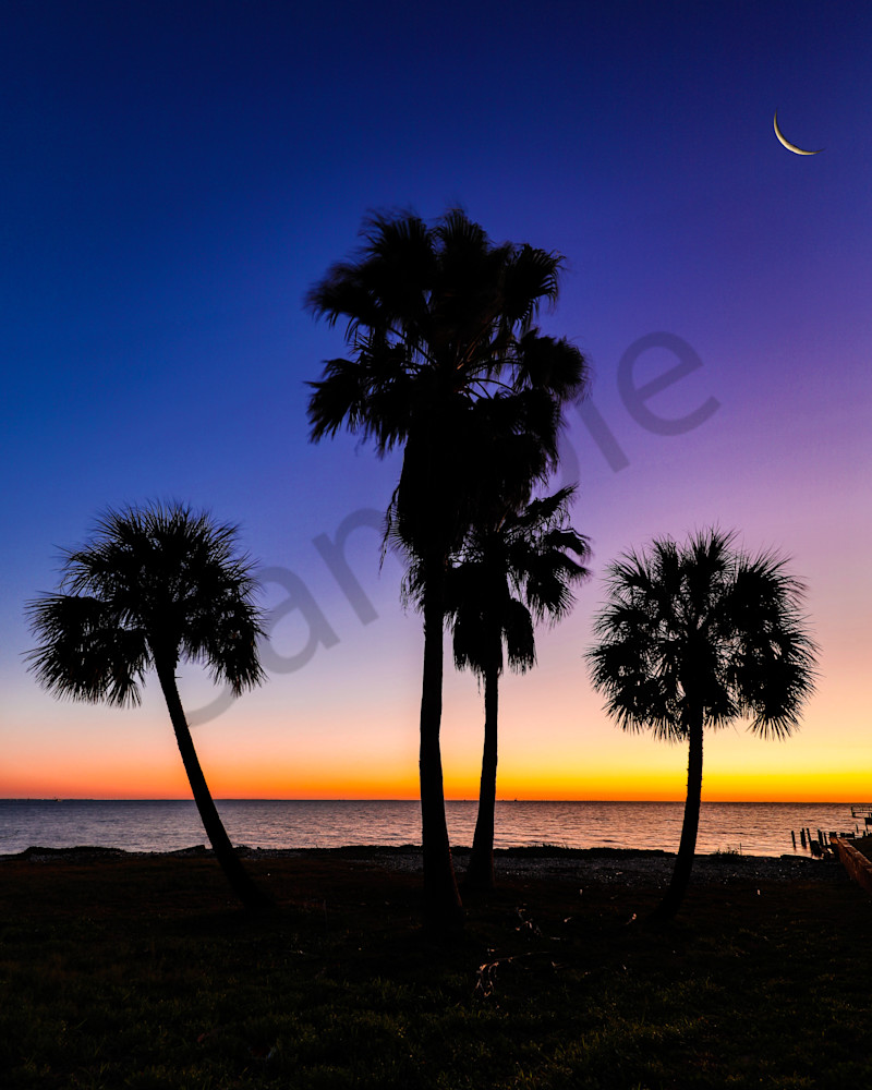 Eyelash Moon Photography Art | John Martell Photography