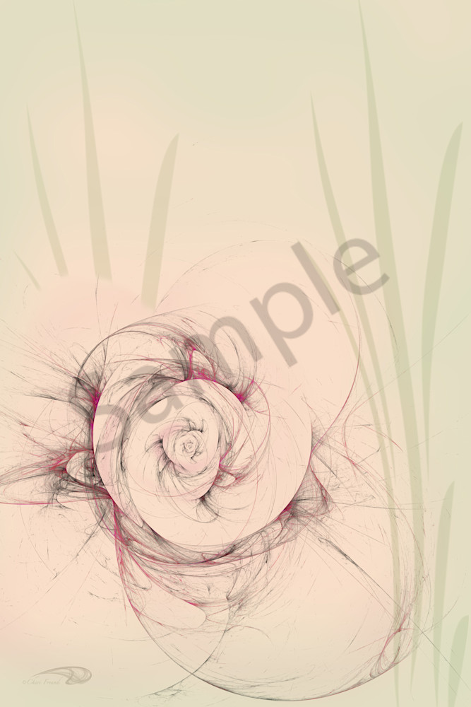 Optic Rose digital art by Cheri Freund