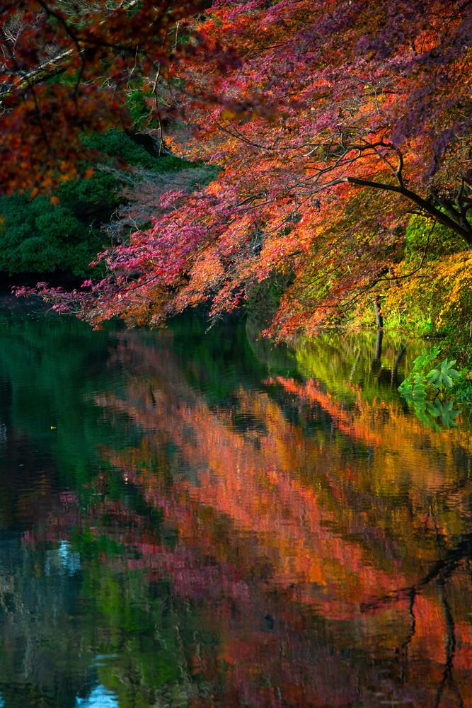 Travel Photography Autumn Rush By Leighton Lum