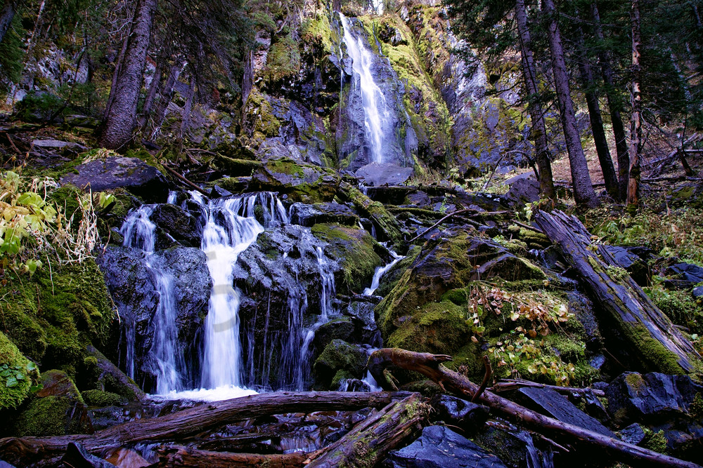 Strawberry Falls within Strawberry Mountain Wilderness with fallen logs and green moss