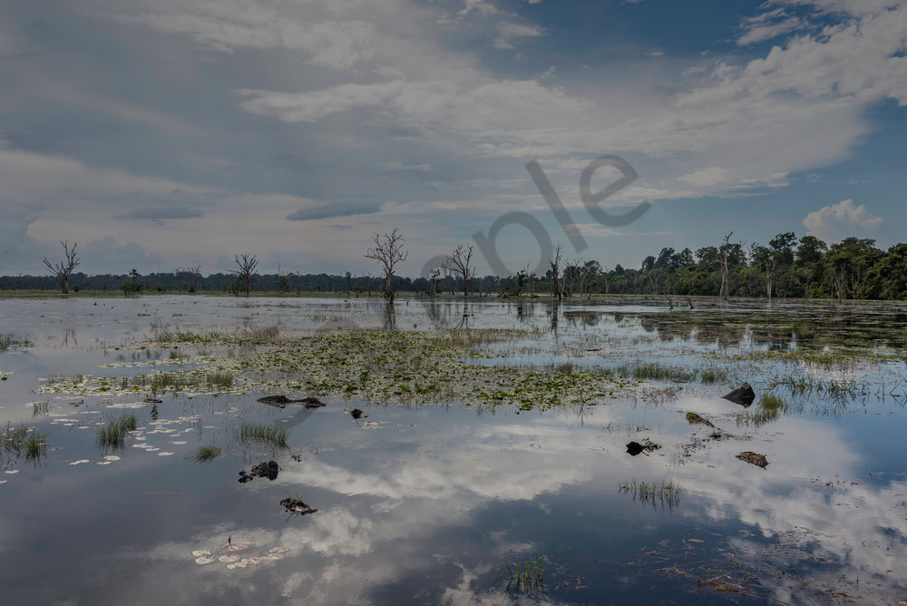 Where the Sky Ends. Reflections in the water on the path to Neak Pean