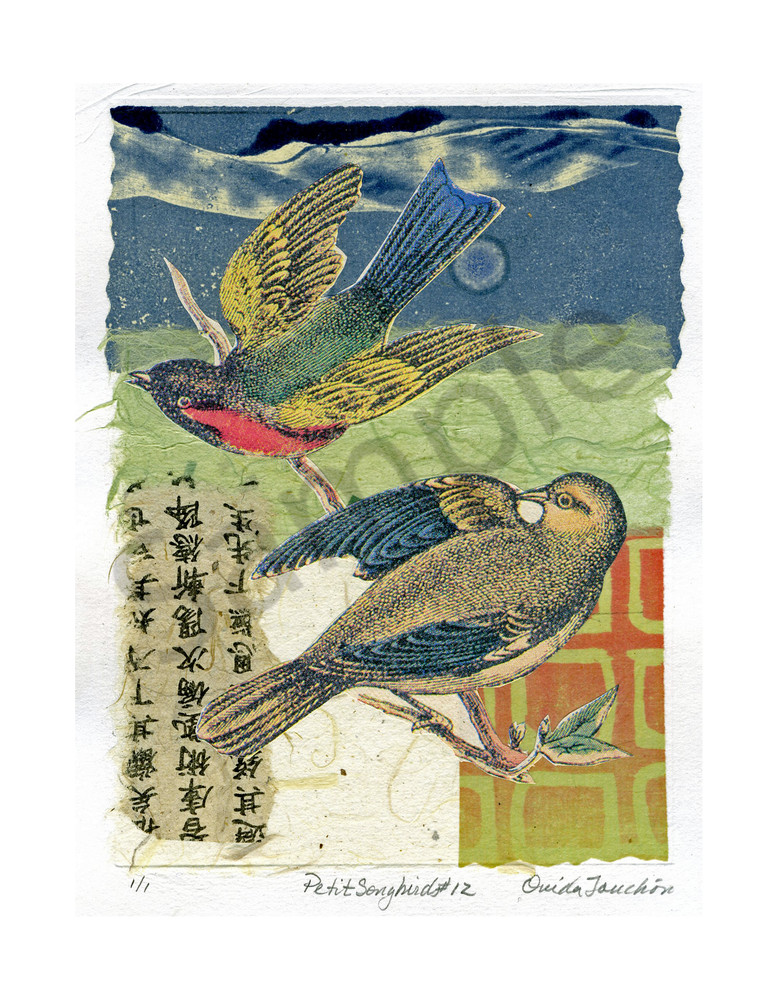 Petit Songbirds 12, fine art songbird collage using chine colle technique for sale by Ouida Touchon