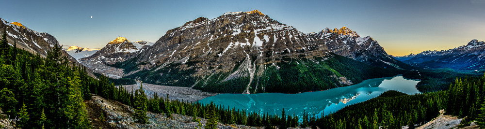 Panorama of Peyto lake at sunrise, with full moon setting