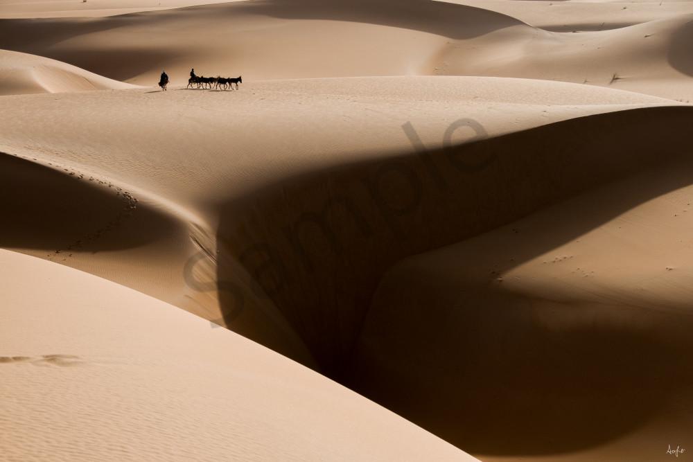 donkey caravan on Mauritania sand dunes, fine art aluminum photograph art