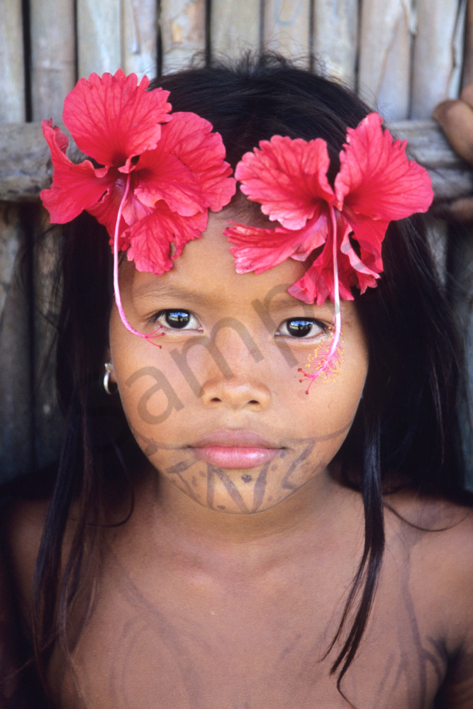 Wounaan girl with flowers in hair and painted chin, art photograph print