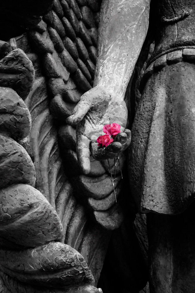 Focal black & white photograph of an angel statue holding pink carnations for sale as fine art by Sage & Balm