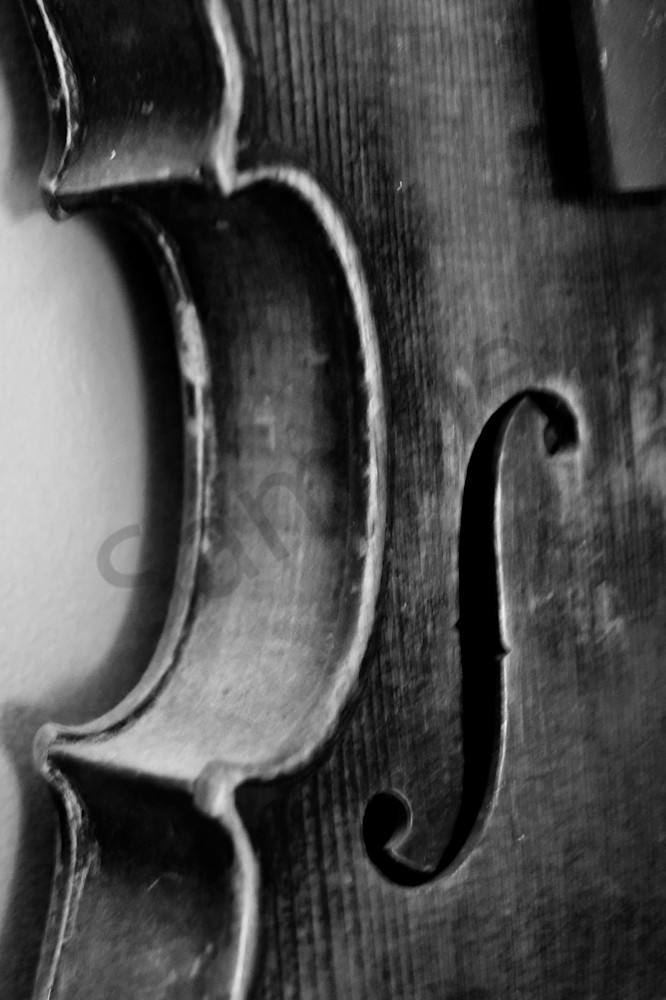 Black & white abstract and macro photograph of a violin body, for sale as fine art by Sage & Balm
