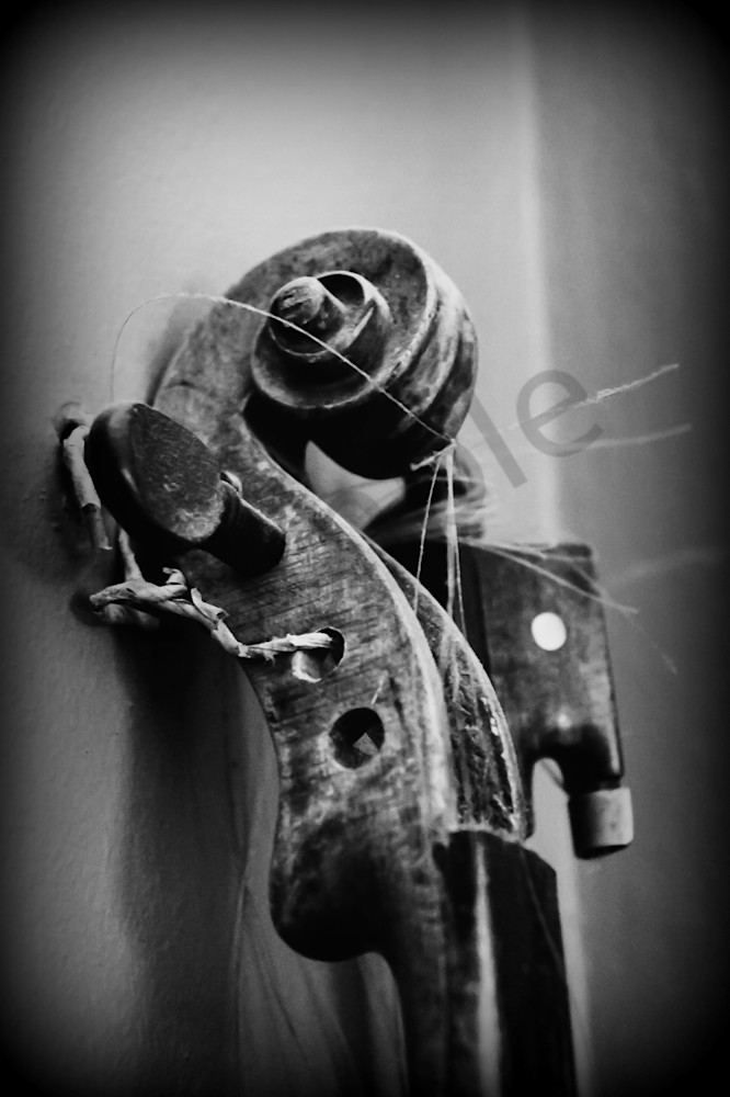 Black White Abstract Photograph Of A Violin Scroll For Sale As