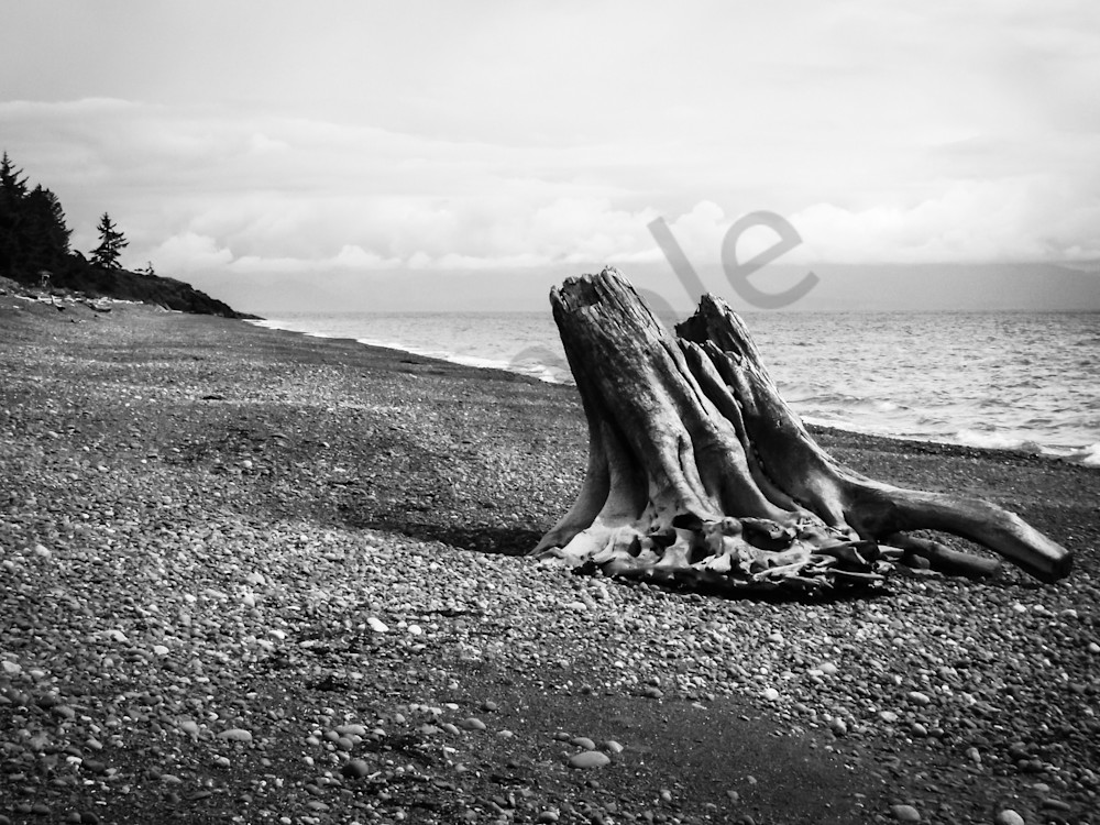 Stunning Black White Nautical Prints For As Fine Art Sage Balm Photography