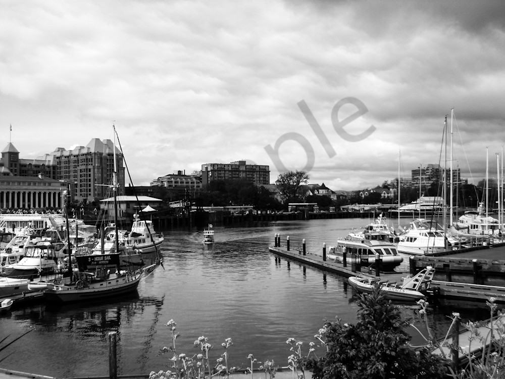Victoria Harbour Photography Art | Sage & Balm Photography