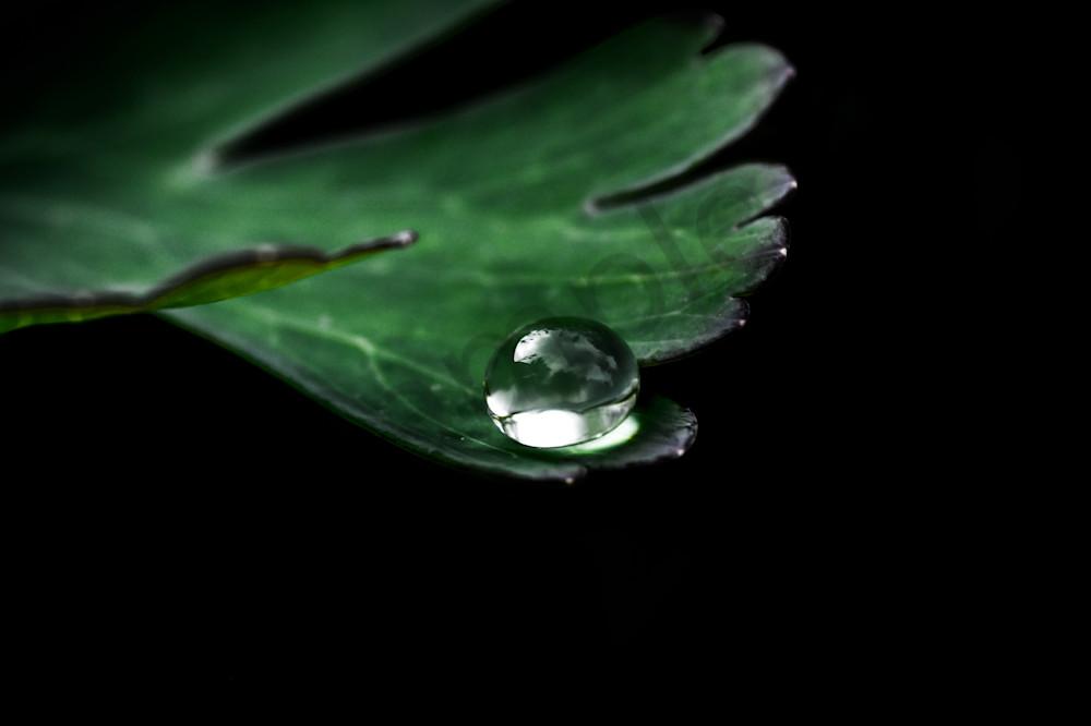 On The Precipice Photography Art   Sage & Balm Photography