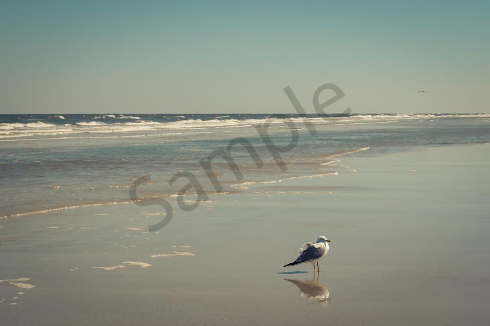 Reflections Photography Art | Sage & Balm Photography