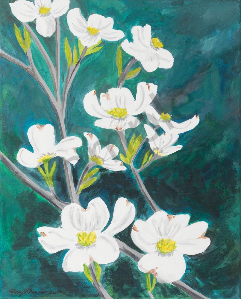 Dogwood Tree Blossom Arkansas Painting