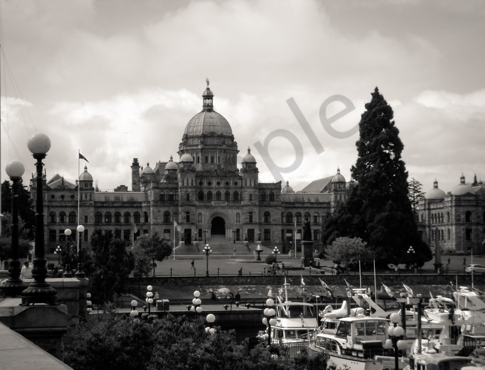 Parliament At Victoria Harbour Photography Art | Sage & Balm Photography