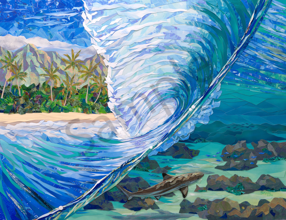 Hawaii Art Shallow Sightings By Patrick Parker