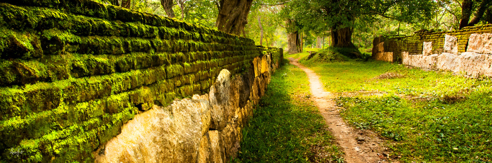 Path between mossy old brick walls, in fine art photograph, panorama