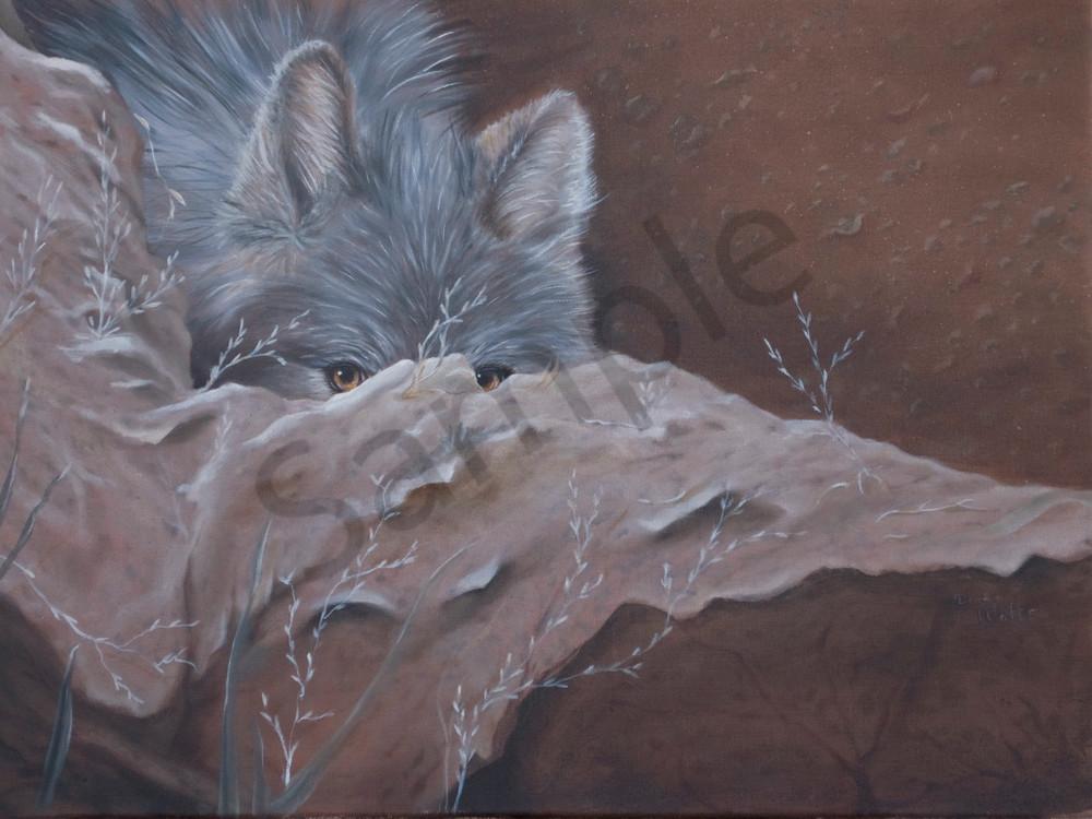 She Wolf Peeking Art | Art Relief