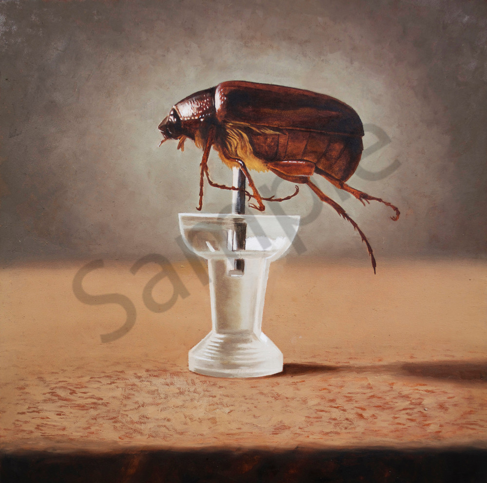 June Bug Art | Warfield Art and Design