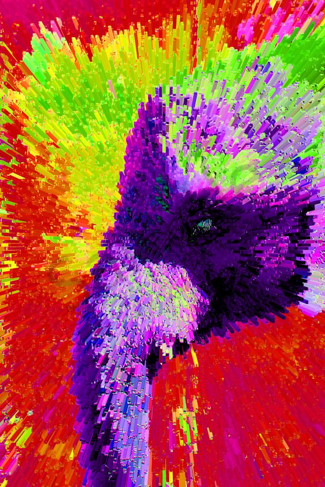 Img 6285 Max Peter Lite 2 Art | Oz Fine Art Studio