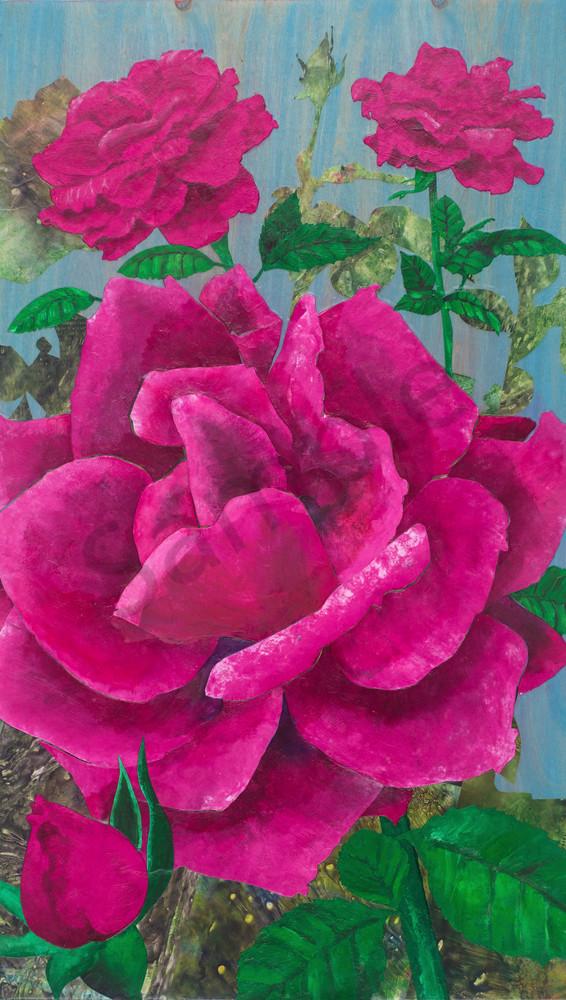 Pink Grandiflora Roses 2