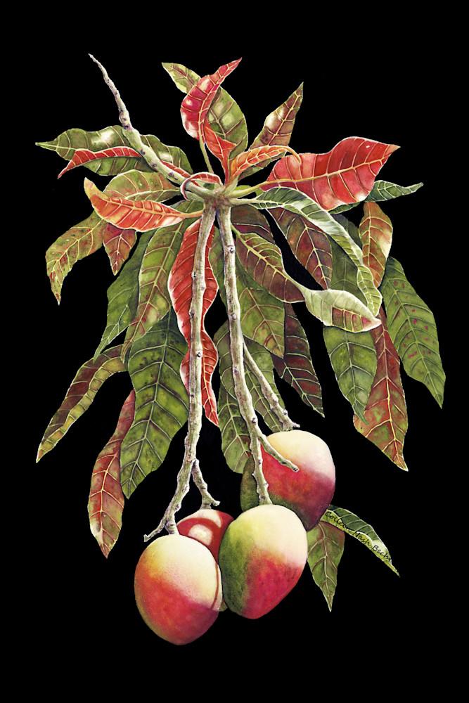 Mango Tango Art | ColleenNashBecht