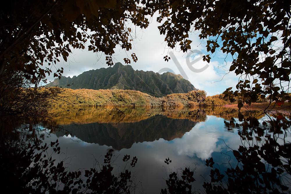 lake hawaii view-1