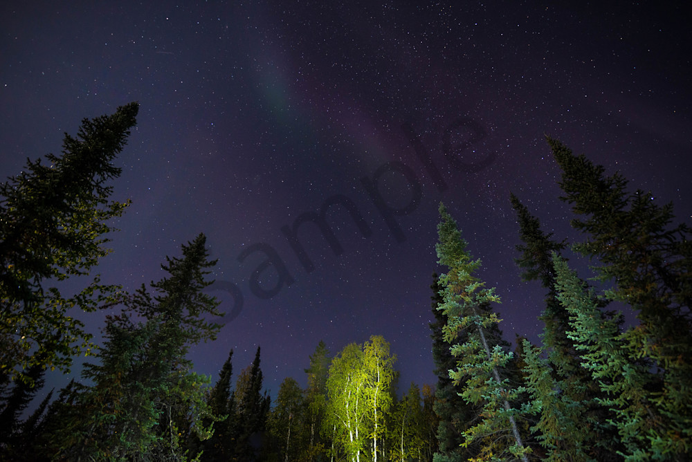 Canadian North Night Sky Photograph for Sale as Fine Art