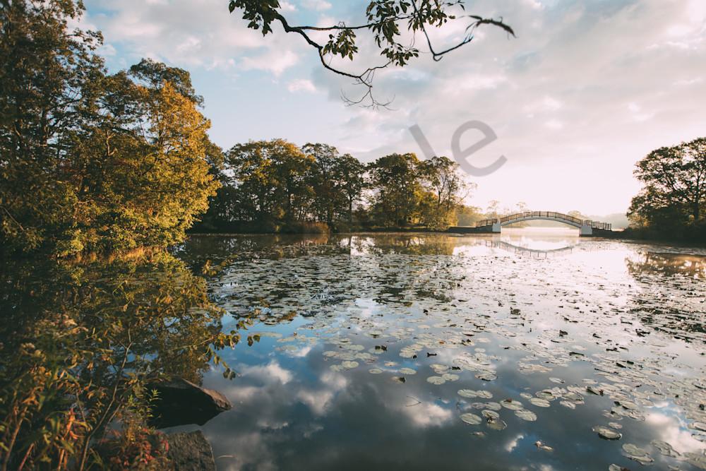 peaceful lake with a bridge