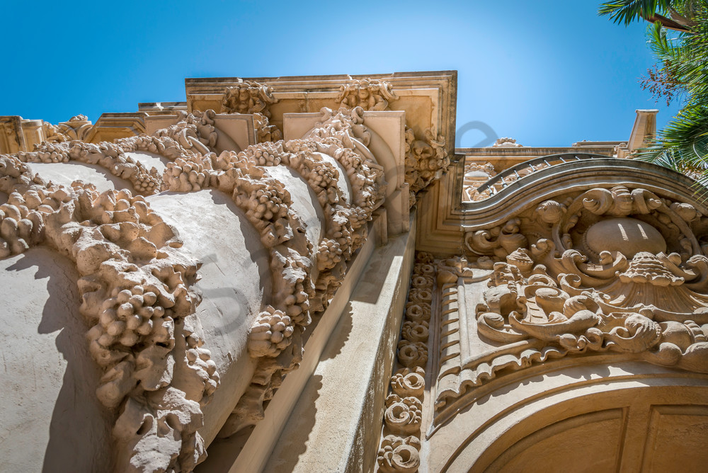 Grapevines and Columns fine art print | Susan J Photography