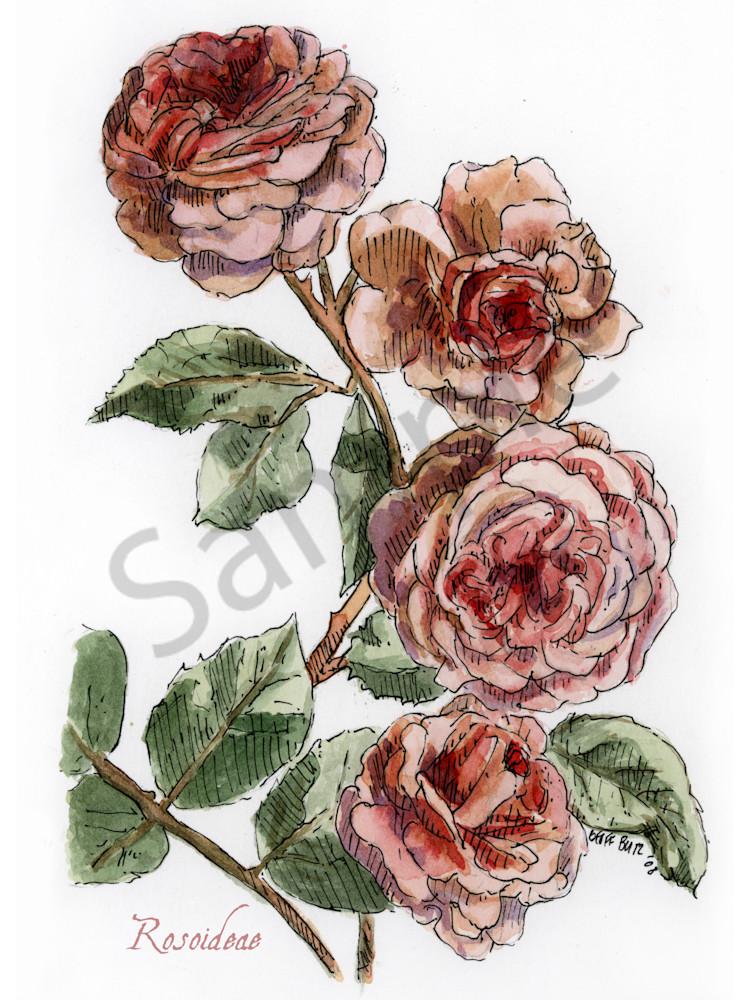 June   Rose Art | Geoffrey Butz Art & Design Inc