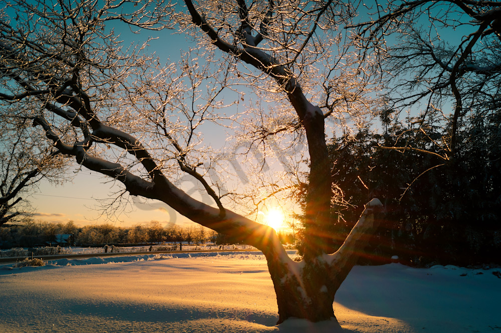Winter Sunset Photography Art | Sage & Balm Photography
